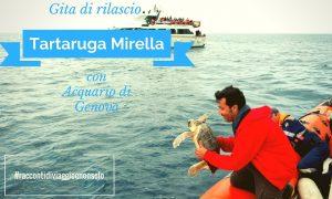 15/7/2017 Gita di rilascio della Tartaruga Mirella curata dall'Acquario di Genova
