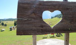 Montagna con bambini : viaggio tra Lago di Braies, Alpe di Siusi e Piz Sorega in Alta Badia