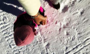 Weekend a Prato Nevoso sugli sci con bambini : cosa fare, dove dormire, dove mangiare