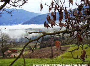 Viaggio in #Trentino tra gusto e tradizione