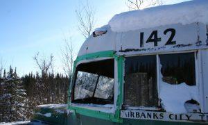 """Viaggio in Alaska tra le pagine del libro """"Ritorno alle Terre Selvagge"""" di Francesco Lotta"""