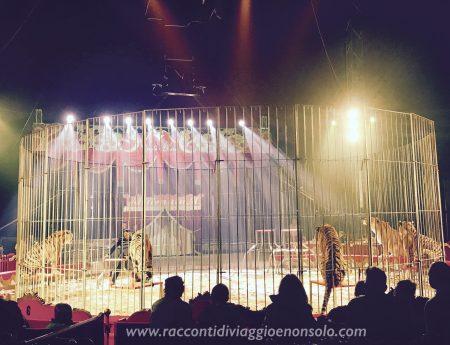 Il circo non è educativo per i nostri figli