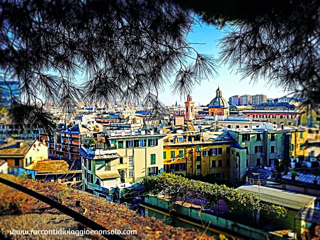 Vista su Genova dall'Acquasola