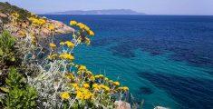 Weekend all'Isola del Giglio: in autunno è meglio!